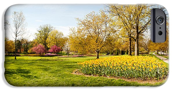 Garden Scene iPhone Cases - Flowers With Trees At Sherwood Gardens iPhone Case by Panoramic Images