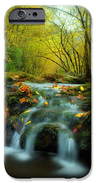 Fall Scenes iPhone Cases - Flowing October iPhone Case by Michael Eingle