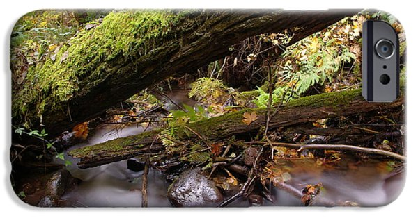 River iPhone Cases - Flowing Under A Log iPhone Case by Jeff  Swan