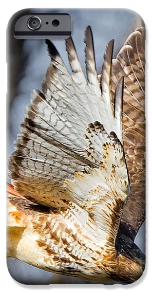 Fly Away iPhone Case by Bill  Wakeley