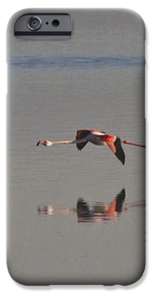 Fly Fly Away My Pretty Flamingo iPhone Case by Heiko Koehrer-Wagner