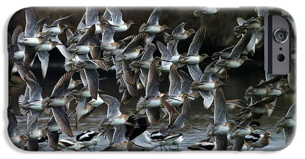 Miracle iPhone Cases - Fly-In iPhone Case by Elka Lange