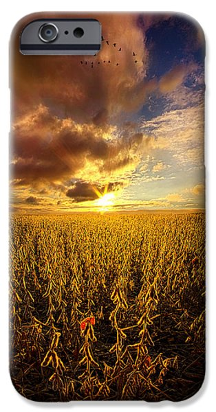 Vertical Flight iPhone Cases - Fly Over Country iPhone Case by Phil Koch