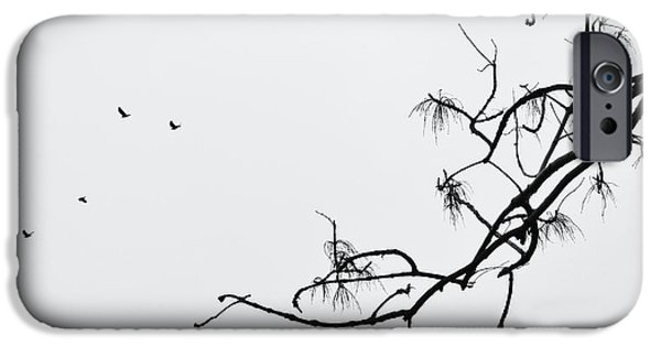 Crows iPhone Cases - Flying Away iPhone Case by Marianna Mills