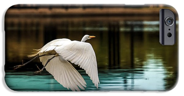 Haybale iPhone Cases - Flying Egret iPhone Case by Robert Bales