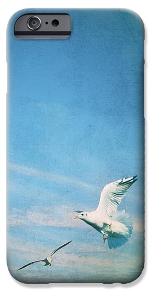 Sea Birds iPhone Cases - Flying Into Blue iPhone Case by Steffi Louis