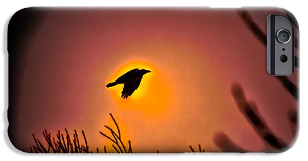 Crows iPhone Cases - Flying - Leif Sohlman iPhone Case by Leif Sohlman