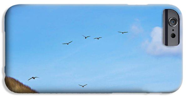 Flying Seagull iPhone Cases - Flying over the dunes  iPhone Case by Angela Doelling AD DESIGN Photo and PhotoArt