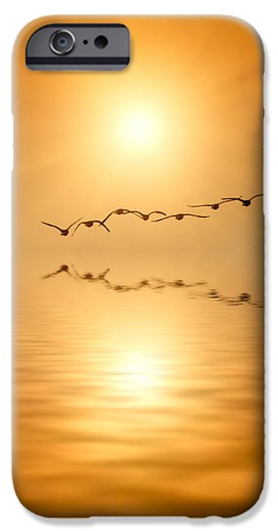 Flying South iPhone Case by Wim Lanclus
