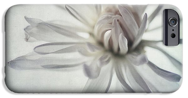 White Daisies iPhone Cases - Focus On The Heart iPhone Case by Priska Wettstein