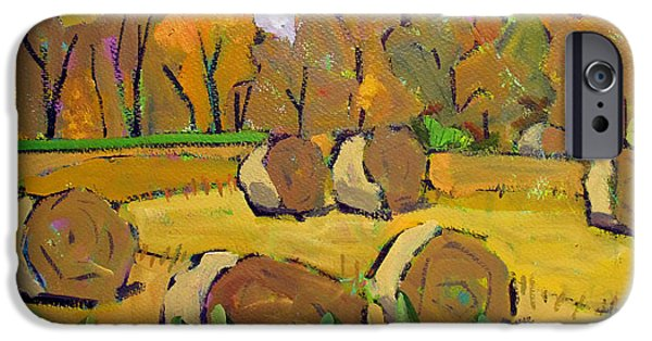 Bales Paintings iPhone Cases - Fodder Bales iPhone Case by Charlie Spear