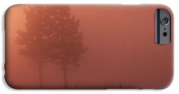 Fog Mist iPhone Cases - Fog In Yellowstone iPhone Case by Art Wolfe