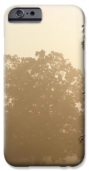 Diffusion iPhone Cases - Fog over Countryside iPhone Case by Olivier Le Queinec