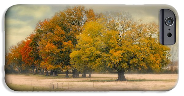 Fall Scenes iPhone Cases - Foggy Autumn Morning - Fall Landscape iPhone Case by Jai Johnson