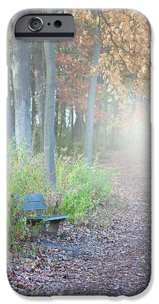 Paths iPhone Cases - Foggy Autumn Morning iPhone Case by Sebastian Musial