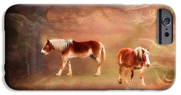 Abnormal iPhone Cases - FOGGY DAY - featured in Funky Images Group iPhone Case by EricaMaxine  Price