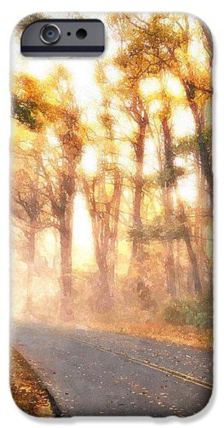 Foggy Fall Wonderland - Blue Ridge Parkway II iPhone Case by Dan Carmichael