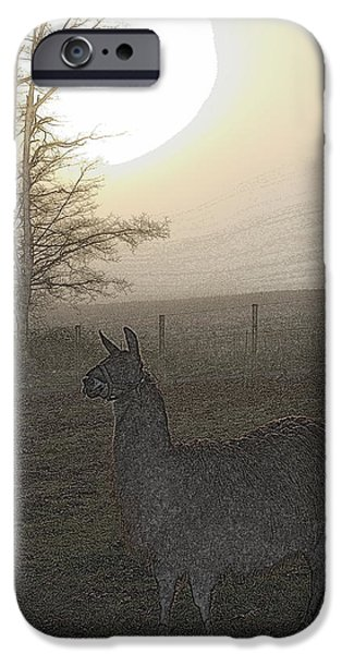 Llama Digital iPhone Cases - Foggy Llama Sunset iPhone Case by Kathy Sampson