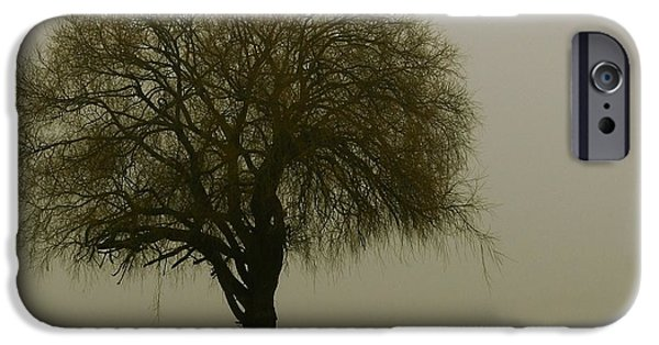 Early iPhone Cases - Foggy Morning iPhone Case by Franziskus Pfleghart