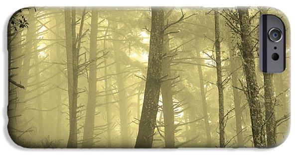 San Francisco iPhone Cases - Foggy Morning on Mount Tamalpais iPhone Case by Lisa McKinney