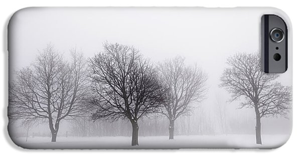 Mist iPhone Cases - Foggy park with winter trees iPhone Case by Elena Elisseeva