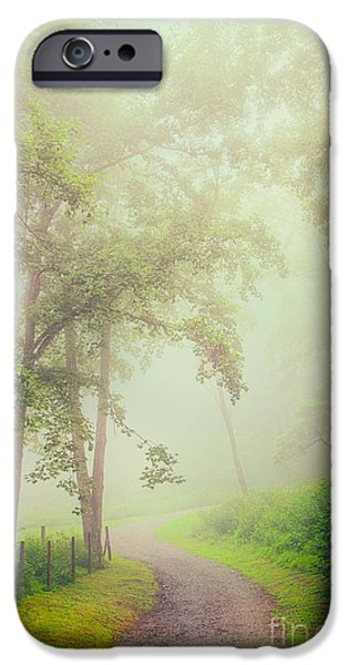 Paint Photograph iPhone Cases - Foggy Path - Blue Ridge Parkway iPhone Case by Dan Carmichael