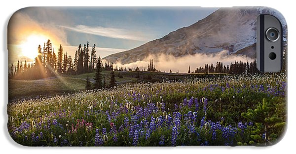 Meadow Photographs iPhone Cases - Foggy Rainier Sunset iPhone Case by Mike Reid