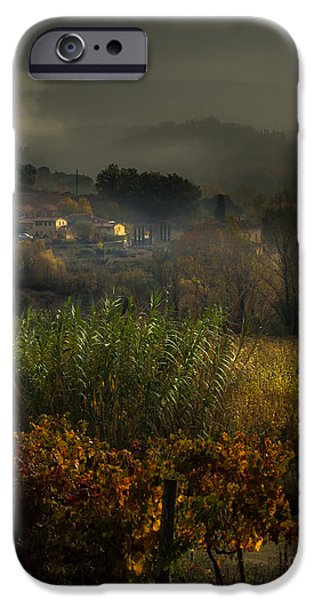Grapevine Red Leaf iPhone Cases - Foggy Tuscan Valley  iPhone Case by Prints of Italy