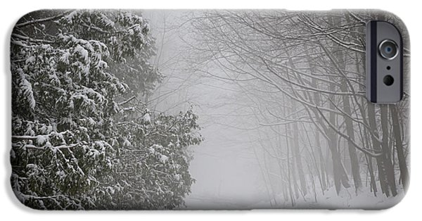 Condition iPhone Cases - Foggy winter road iPhone Case by Elena Elisseeva