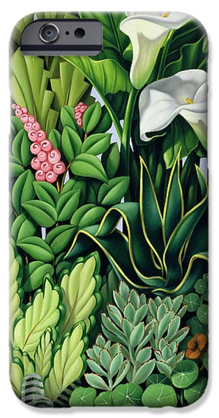 Garden iPhone Cases - Foliage iPhone Case by Catherine Abel