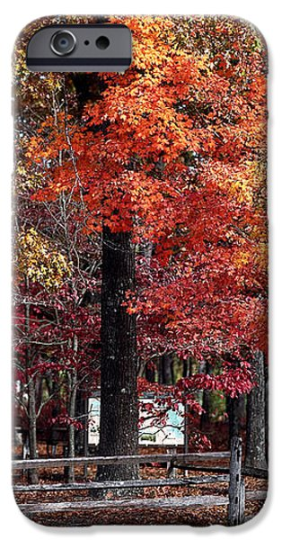 Foliage Colors iPhone Case by John Rizzuto