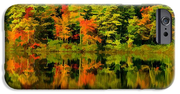 Fall iPhone Cases - Foliage in New Hampshire iPhone Case by Pat Lucas