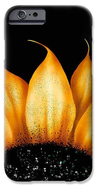 Folk Art Sunflower iPhone Case by Brenda Bryant