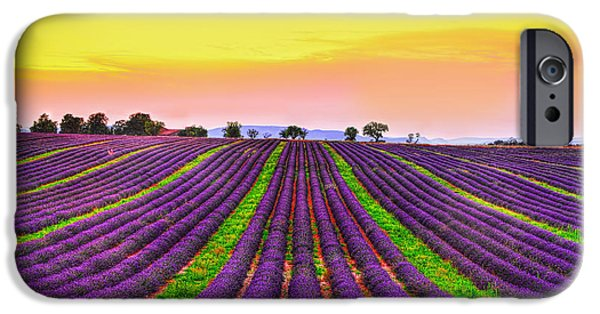 Provence Photographs iPhone Cases - Follow my Dreams iPhone Case by Midori Chan