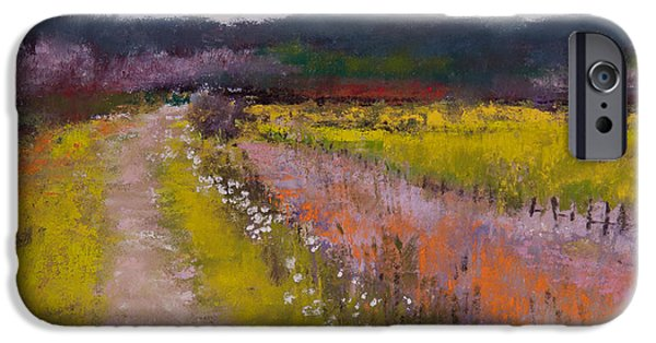 Field Pastels iPhone Cases - Follow the Daisies iPhone Case by David Patterson