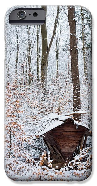 Wintertime iPhone Cases - Food point for animals in the winterly forest iPhone Case by Matthias Hauser