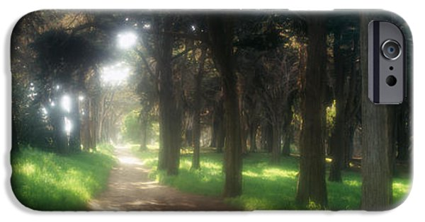 The Way Forward iPhone Cases - Footpath Passing Through A Park, The iPhone Case by Panoramic Images