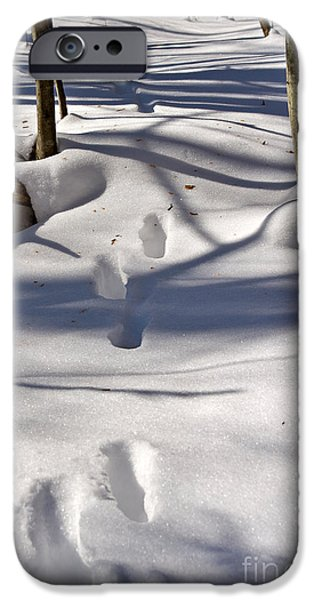 Drifting Snow Photographs iPhone Cases - Footprints in the snow iPhone Case by Louise Heusinkveld