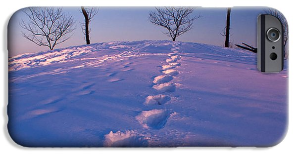 Winter Scene iPhone Cases - Footsteps iPhone Case by Cale Best