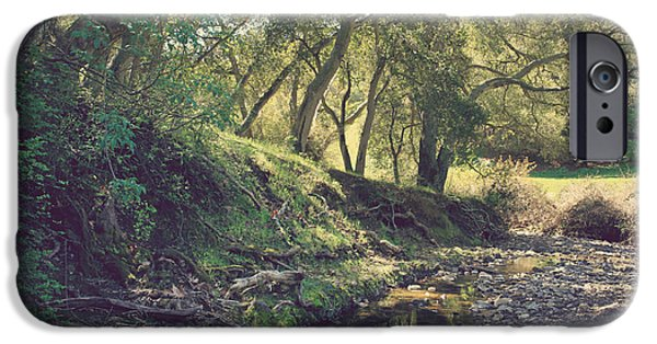 Creek Photographs iPhone Cases - For a Time You Were Mine iPhone Case by Laurie Search