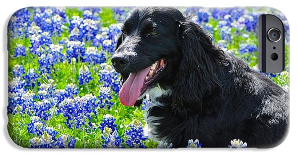 Dog And Wildflowers iPhone Cases - For the love of Dogs and Flowers iPhone Case by Kristina Deane