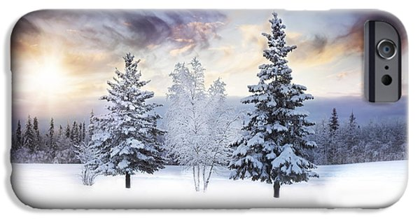 Winter Trees Photographs iPhone Cases - For the Love of Winter iPhone Case by Amber Fite