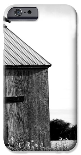Old Barn iPhone Cases - Foraging Two iPhone Case by Jerry Cordeiro