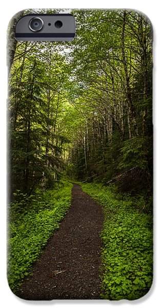 Forest Beckons iPhone Case by Mike Reid