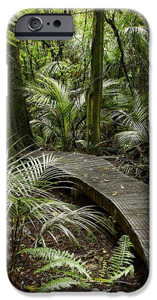 Pathway iPhone Cases - Forest boardwalk iPhone Case by Les Cunliffe