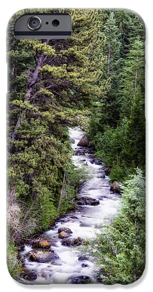 Snow Melt iPhone Cases - Forest Cascade iPhone Case by The Forests Edge Photography - Diane Sandoval