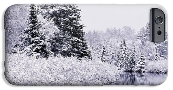 Trees Reflecting In Water iPhone Cases - Forest Covered With Snow iPhone Case by Rod Planck