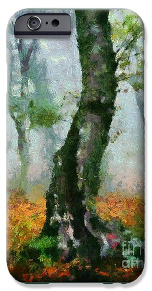 Tree Art Print iPhone Cases - Forest Edge iPhone Case by Elizabeth Coats