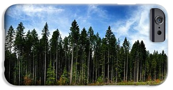 Forest iPhone Cases - Forest edge iPhone Case by Jeff Klingler