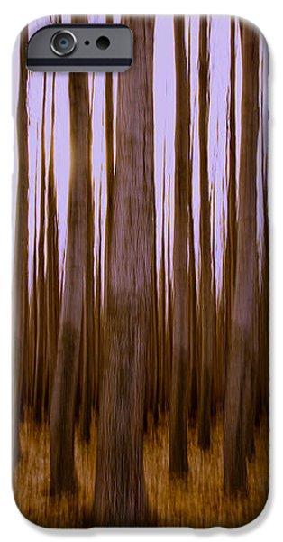 Forest Escape iPhone Case by Dan Mihai